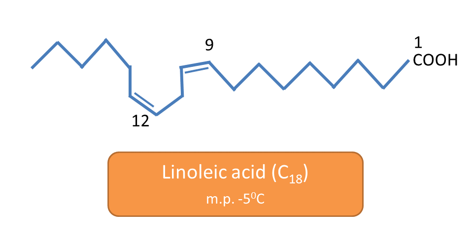 linoleic acid and its melting point