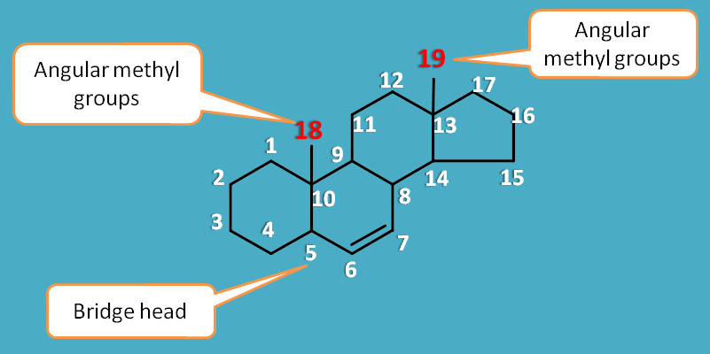 Structure of steroidal with numbering