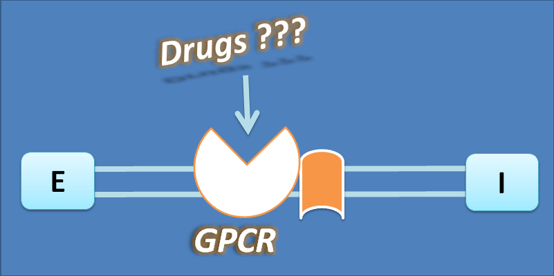 what are the drugs that bind to GPCR