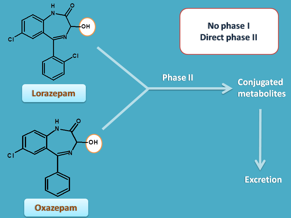 oxazepam and lorazepam are directly conjugated