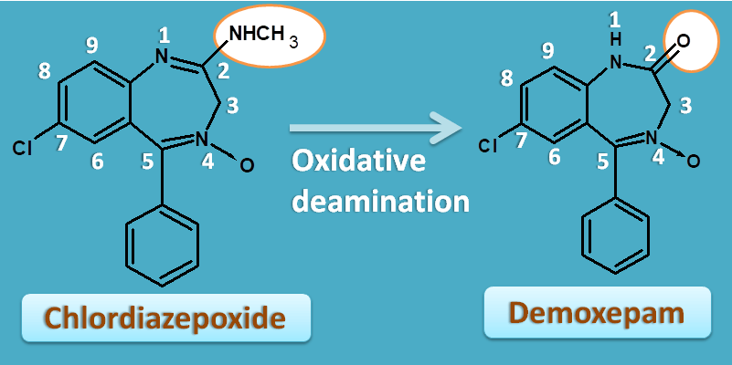 conversion of chlordiazepoxide to demoxepam
