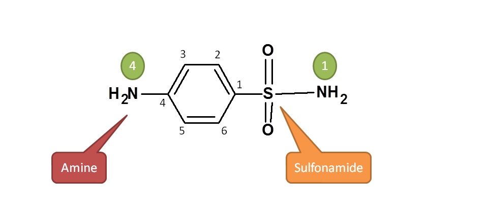 Principal functional group in sulfanilamide