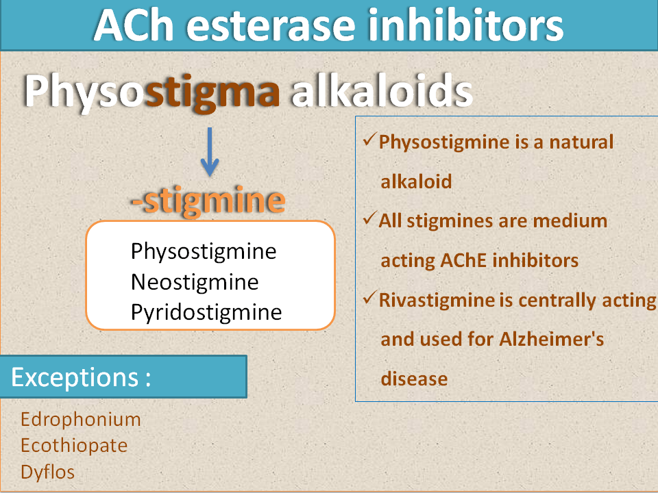 Suffixes of ACh esterase inhibitors