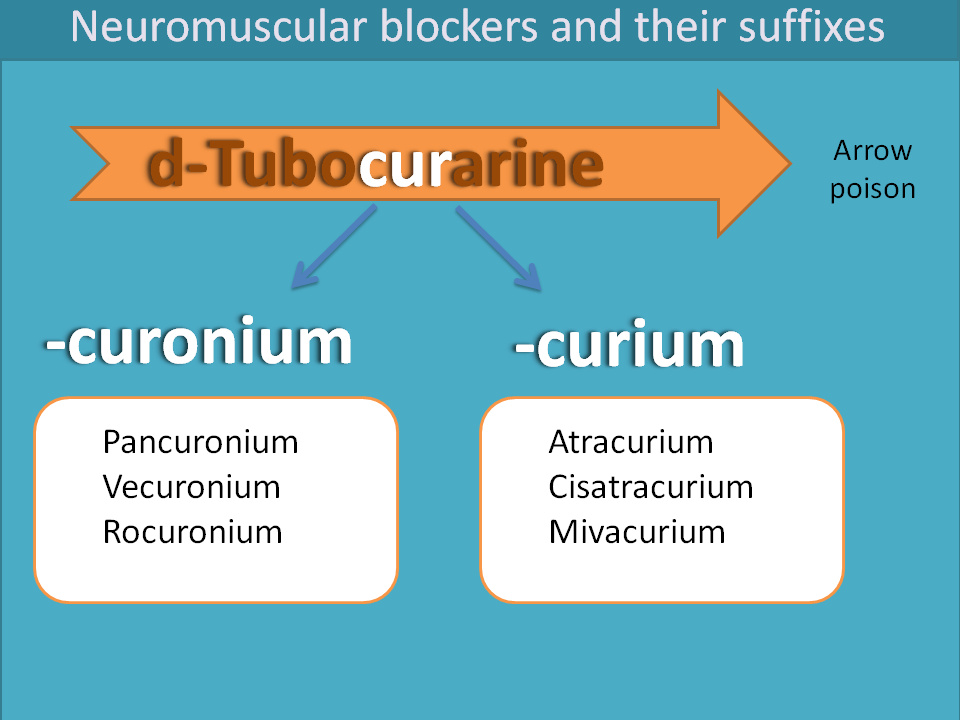 Suffixes of neuromuscular blockers