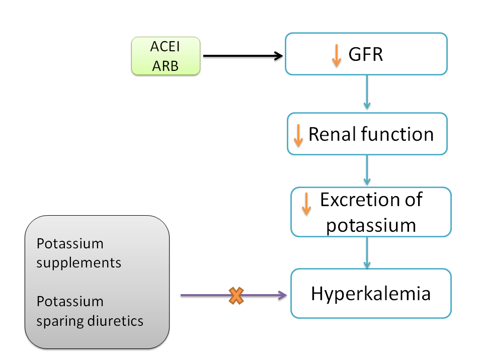 ACE inhibitors causing renal failure and hyperkalemia eliminating the use of potassium supplements