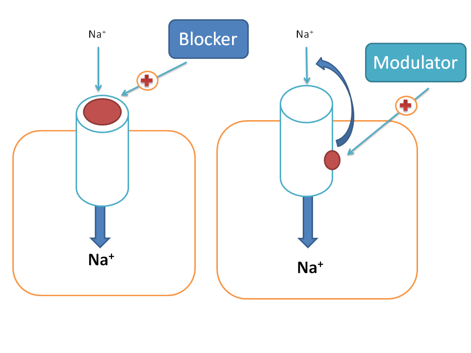 difference between blocker and modulator