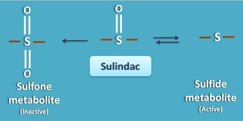 sulfone and sulfide metabolites of sulindac