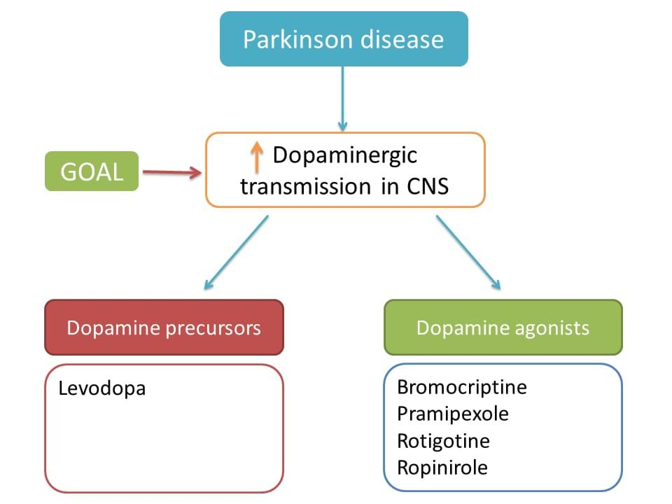 drug targets in parkinson disease