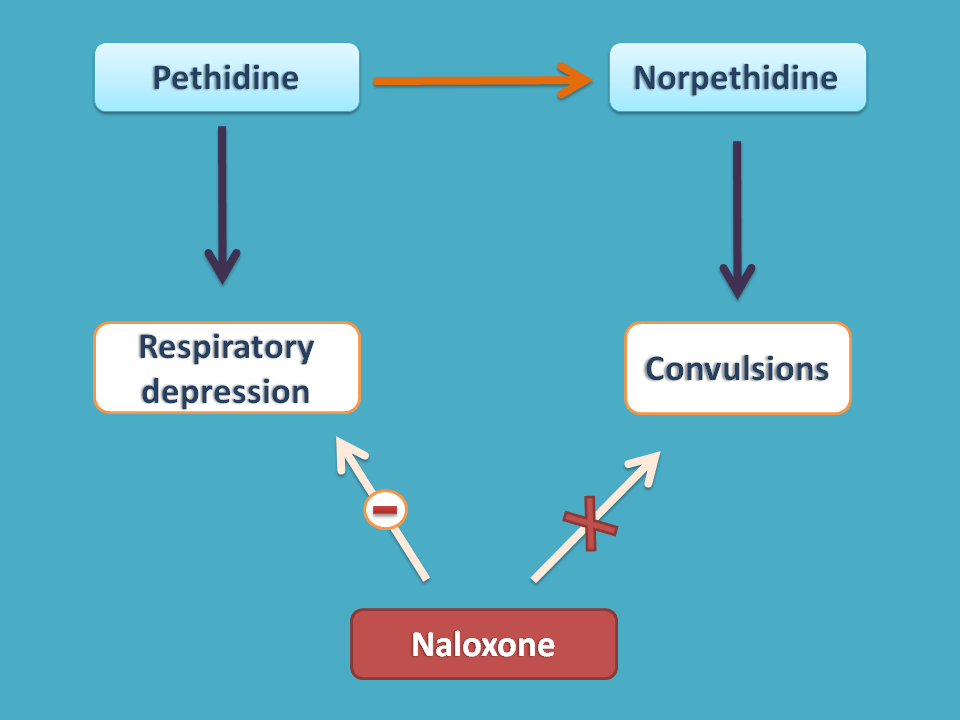 Naloxone reverse pethide effects but not of norpethidine