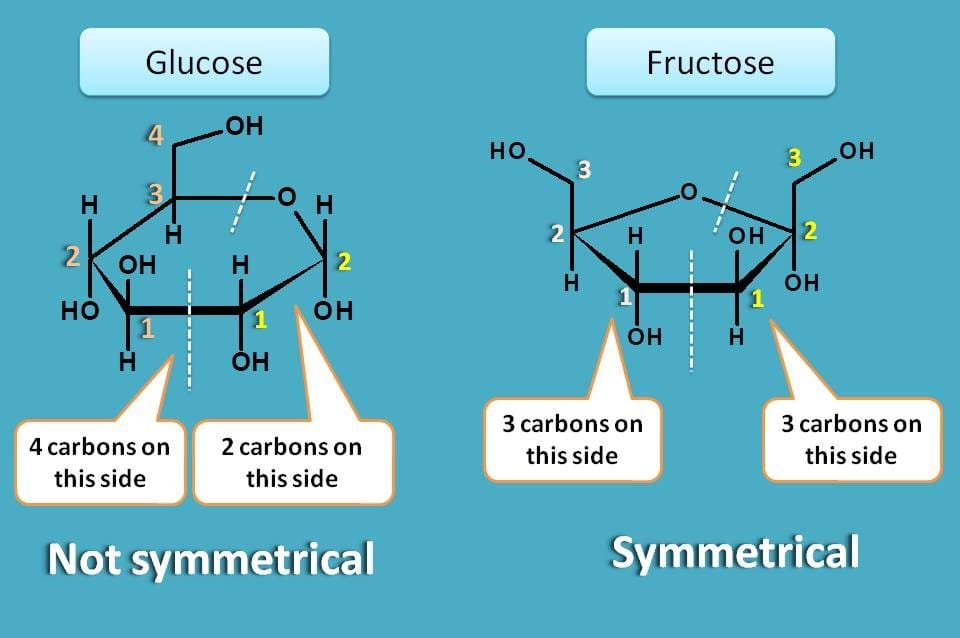 comparison of glucose and fructose rings