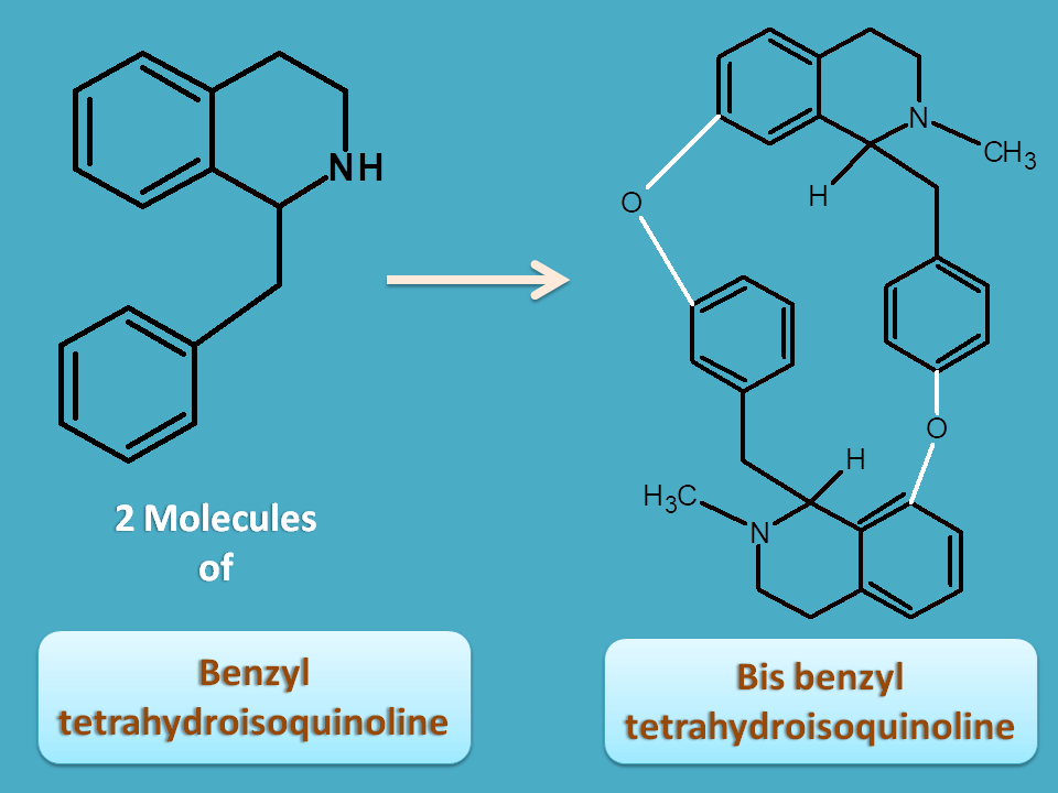 conversion of benzyl tetrahydroisoquinoline to bis benzyl tetrahydroisoquinoline
