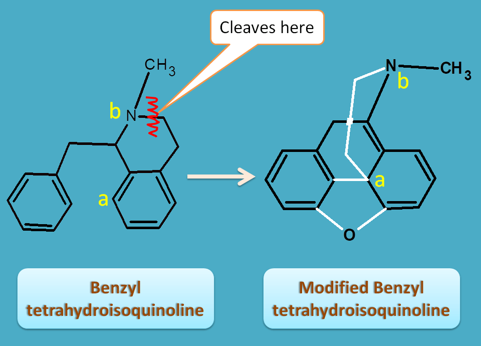 modified benzyl tetrahydroisoquinoline from tyrosine