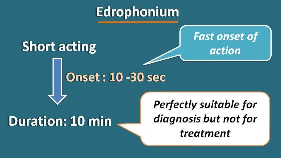 Short duration of action of edrophonium