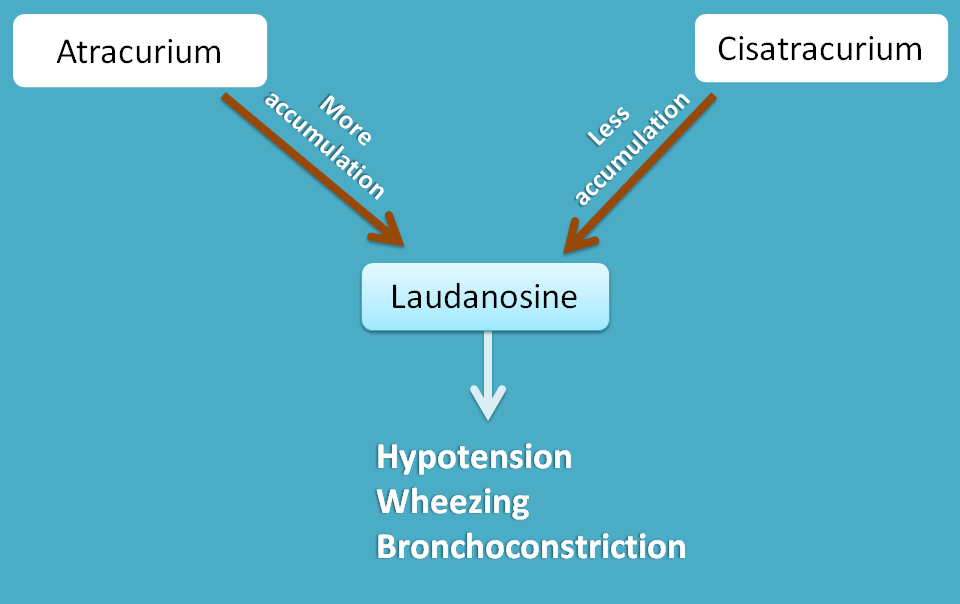 conversion of atracurium to laudanosine