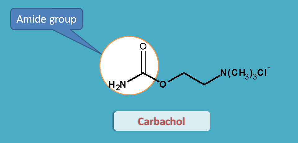 structure of carbachol