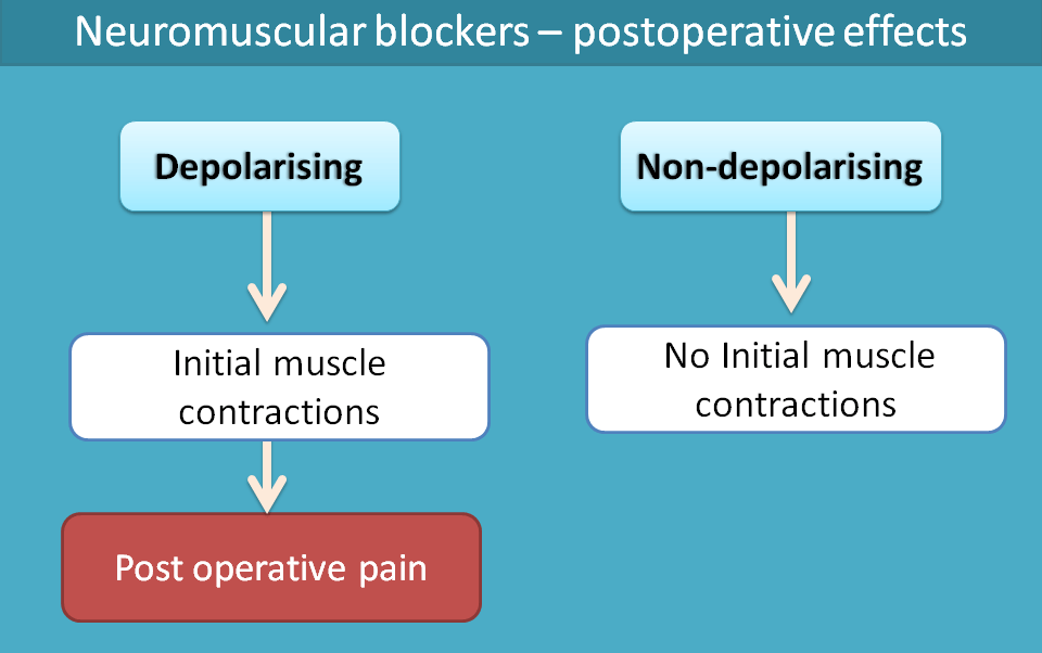 postoperative effects of neuromuscular blockers