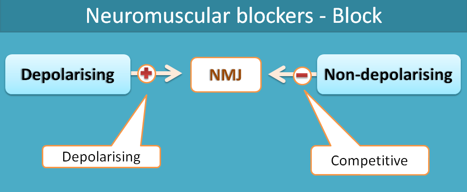 Type of block of neuromuscular blockers