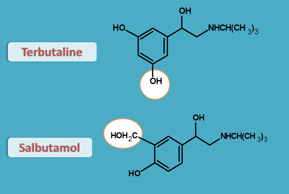 structures of salbutamol and terbutaline